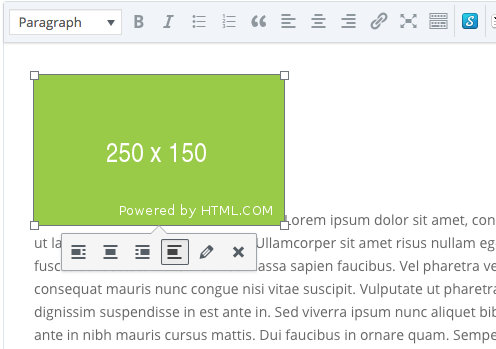 image inserted into divi text box with no float