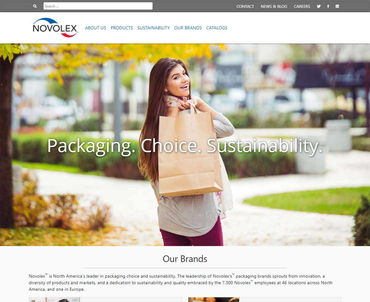 Displaying the homepage image of one of our web design projects: Novolex