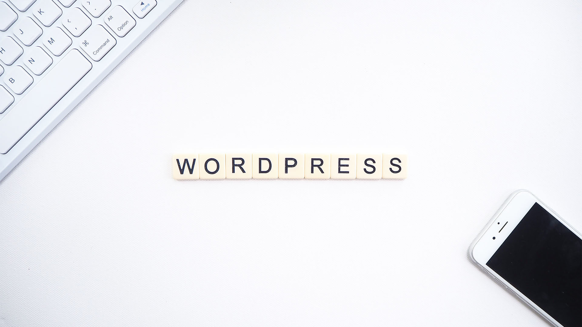WordPress: Logging In, Navigating the Menu, and More Resources