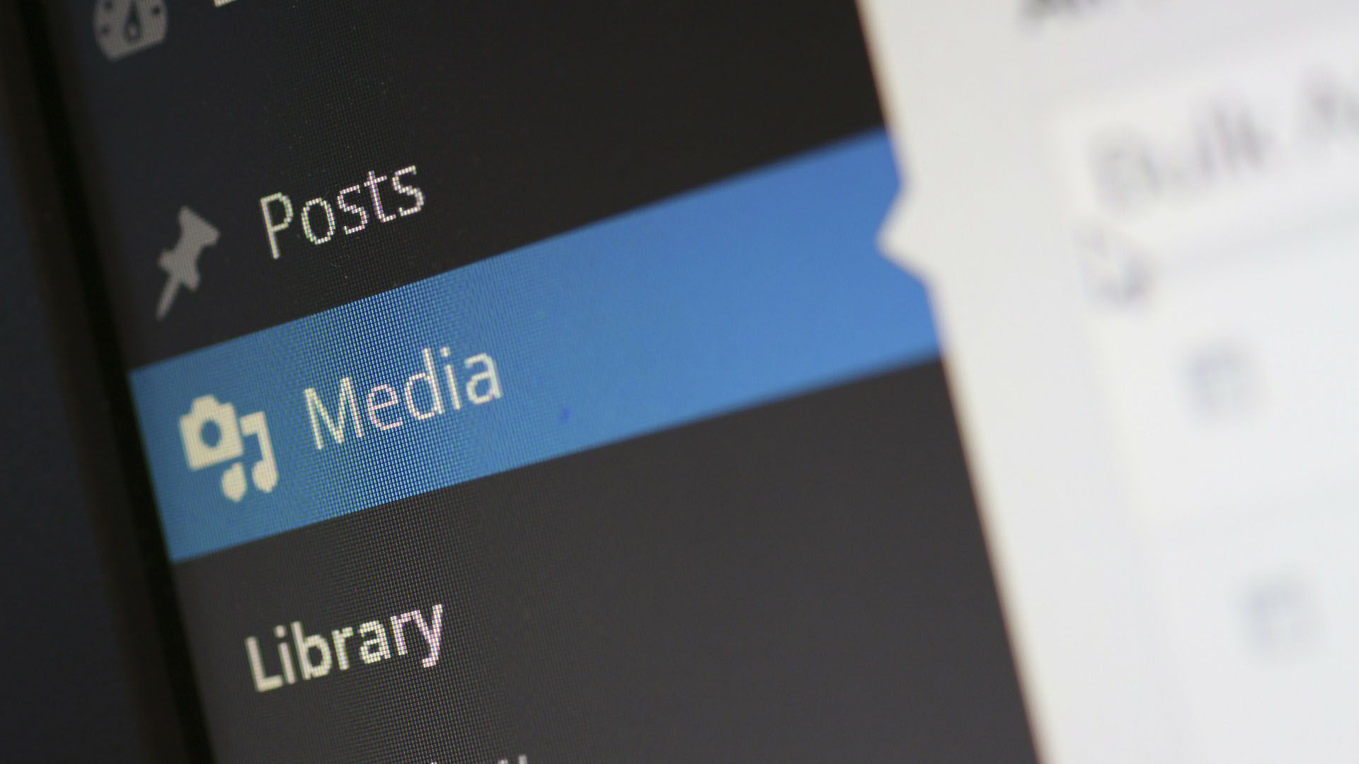 Add media and content on WordPress